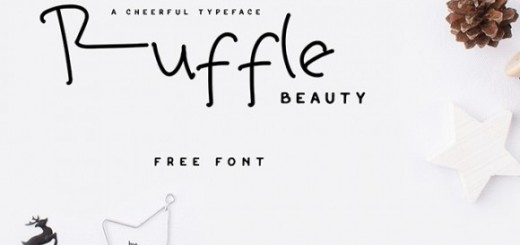 10 Best Handwriting Fonts for Graphic Designers-ruffle beauty